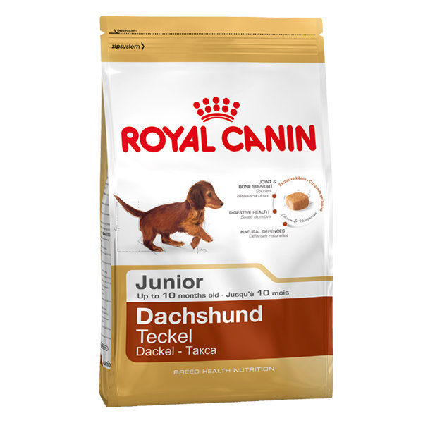 Dachshund Junior для щенков породы такса (Роял Канин)